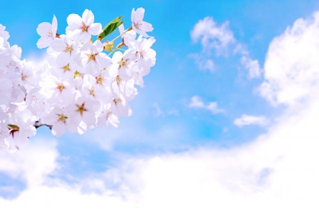 4月_恋愛運